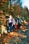 podzimní vycházka spadaným listím