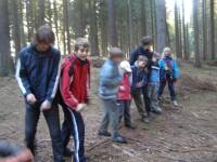 zabírání stromů - start