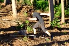 lesní kros - Máťa