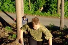 lesní kros - Otík